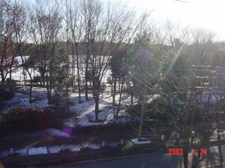 snowsight.jpg
